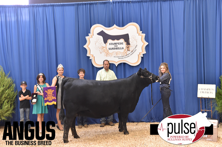 2016 NJAS Champion Owned Heifer Early Senior Division_Class 56 exhibited by Jera Pipkin PPW2059 copy