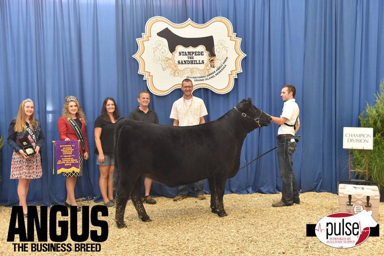 2016-NJAS-Champion-Owned-Heifer-Junior-6-Division_-Class-43-exhibited-by-Carter-Ward-PPW0707