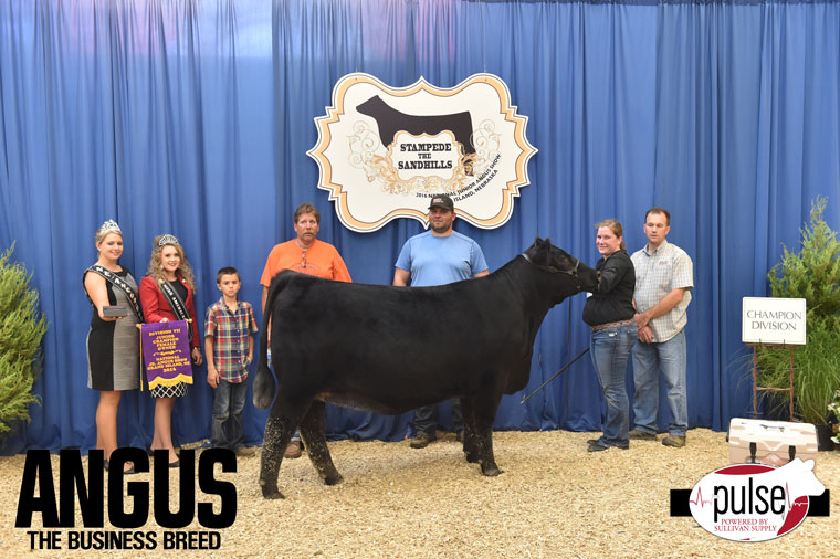 2016-NJAS-Champion-Owned-Heifer-Junior-7-Division_-Class-50-exhibited-by-Maddy-Udell-PPW1262