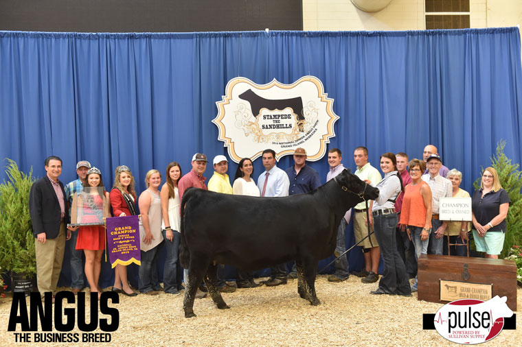 2016-NJAS-Grand-Champion-Bred_Owned-Heifer_-Champ-Senior-Division_-Class-27-exhibited-by-Cheyenne-Jones-PPW2654