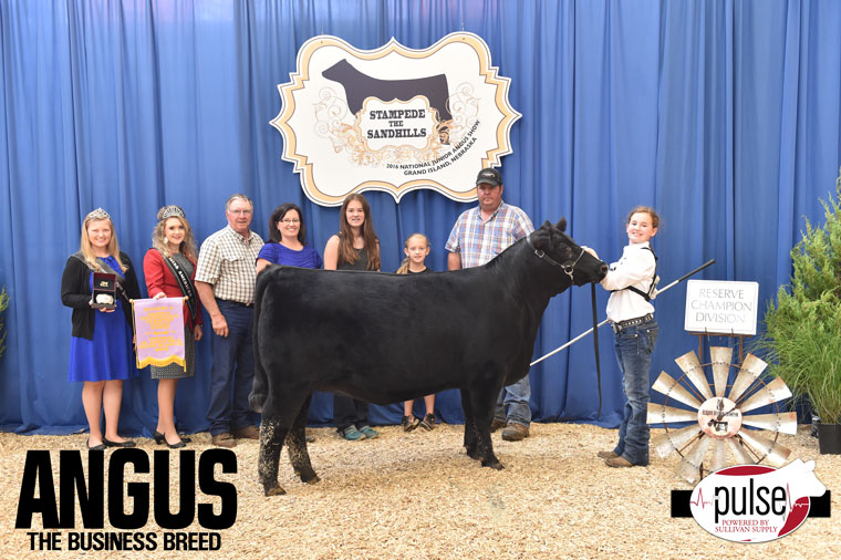 2016-NJAS-Res-Champ-Owned-Heifer-Intermediate-2_Class-17-exhibited-by-Ella-Brooks-PPW7419