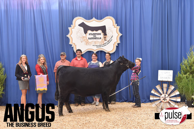 2016-NJAS-Res-Champ-Owned-Heifer-Junior-1-Division_Class-24-exhibited-by-Hailey-Jentz-PPW8054