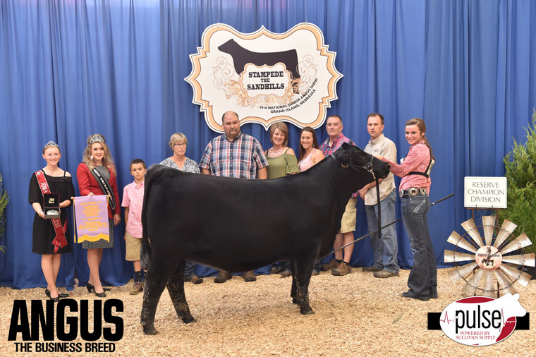2016-NJAS-Res-Champ-Owned-Heifer-Junior-4-Division_Class-36-exhibited-by-Taylor-Rae-Duckett-PPW8867