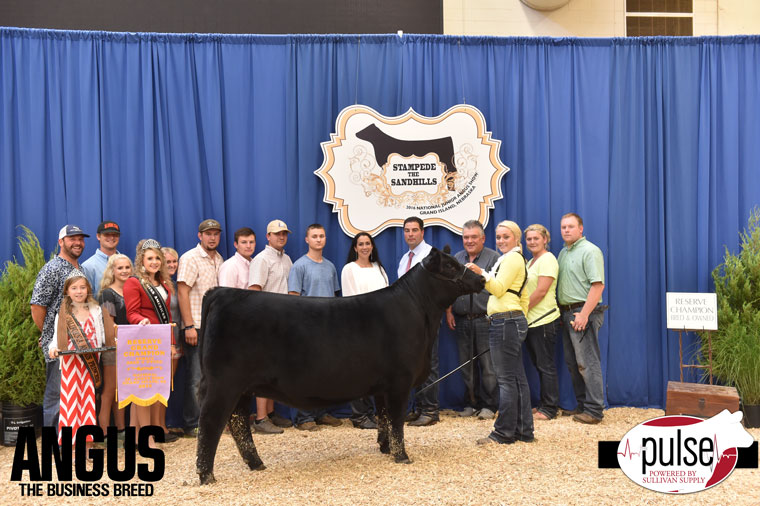 2016-NJAS-Reserve-Grand-Champion-Bred_Owned-Heifer_-Champ-Intermediate_-Class-14-exhibited-by-Sydney-Schnoor-PPW2697