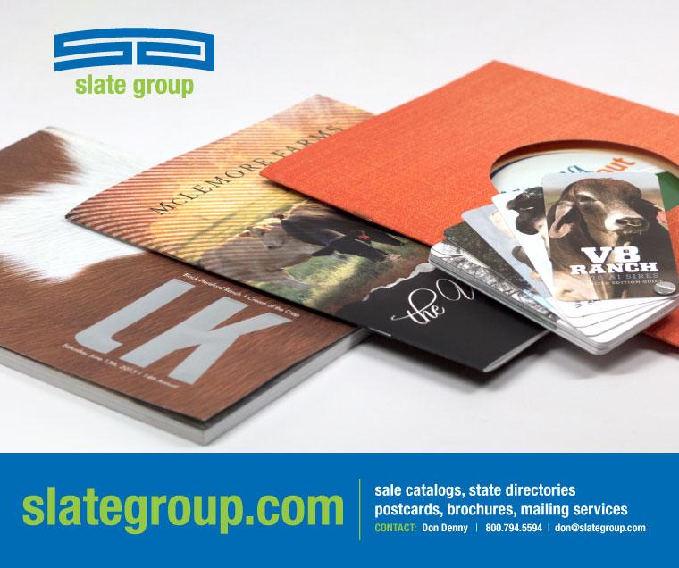 Slate-Group_Don-Denny_-Web-Banner
