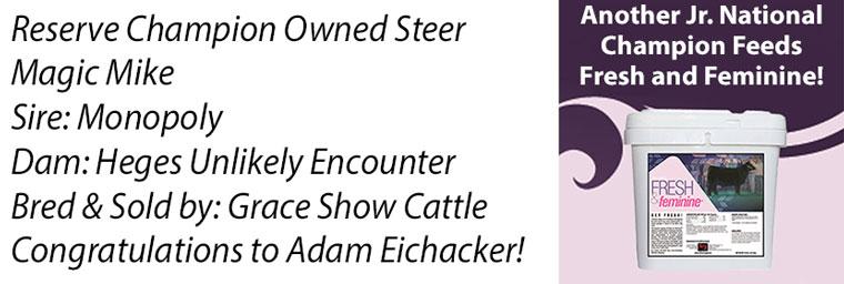 steer_FF_Winner_tag-Recovered