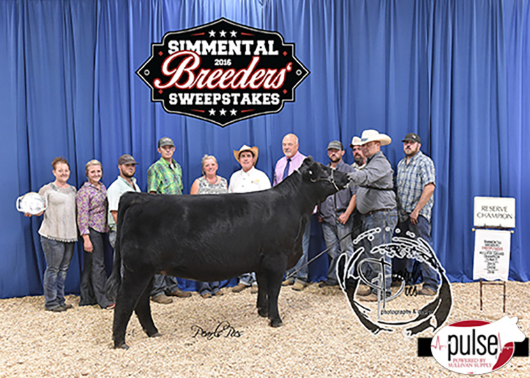 2016 SBS Reserve Champion Purebred Female-Grace Alexander PPW_6342 copy