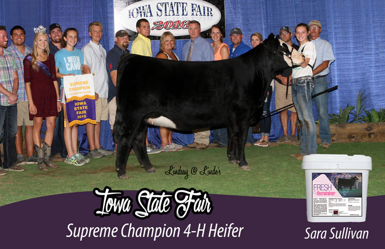 IA_heifer_ff_pic_official