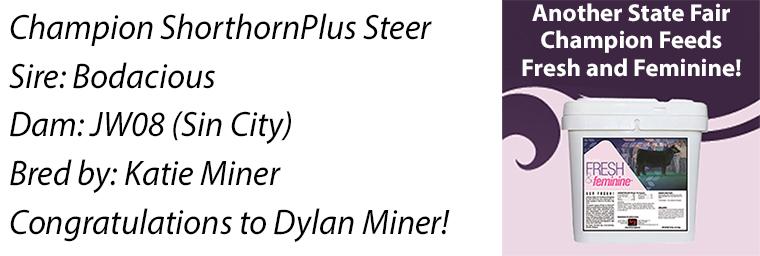 MN Plus Steer FF
