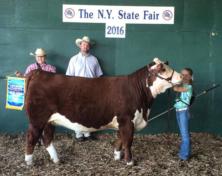 NY 1 Rot Supreme Heifer