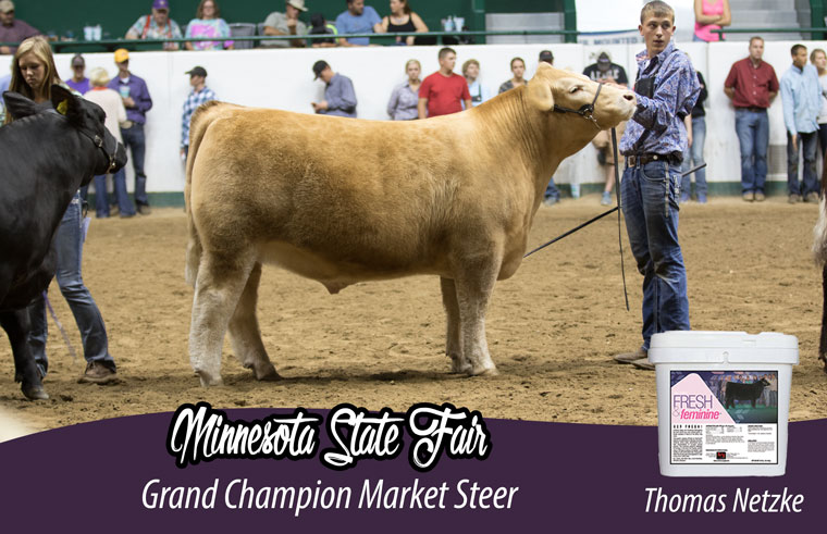 minnesota_steer_ff_pic_official