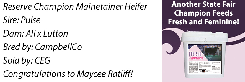 ks-res-mainetainer-heifer-ff