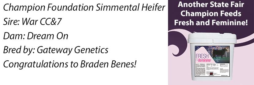 NE 4-H Found Simme Heifer FF