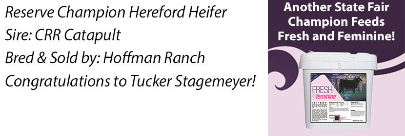 NE 4-H Res Herf Heifer FF