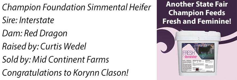 NE Found Simm Heifer FF