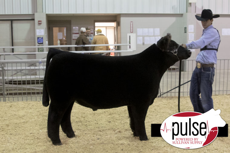 2res_norfolk16_reserve-overall-steer_aw2a7756