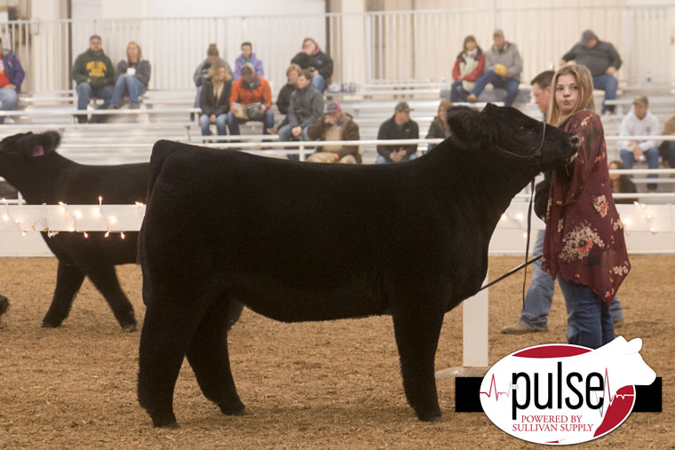 1ch_kbe16_mainetainer-steer-ring-a_res-ring-b_img_8416