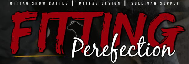 Fitting Perfection Contest – Sheep/Goat Leg Division Winner