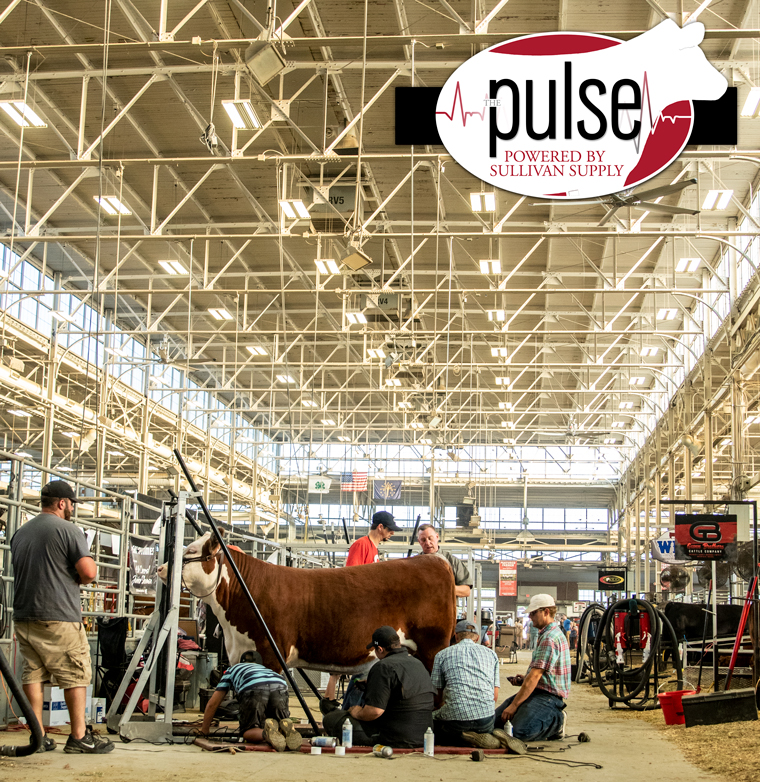 The Final Drive | Indiana State Fair | The Pulse